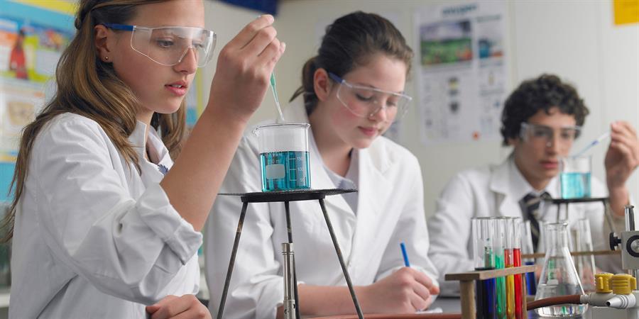 STEM: Science of Food Camp Image